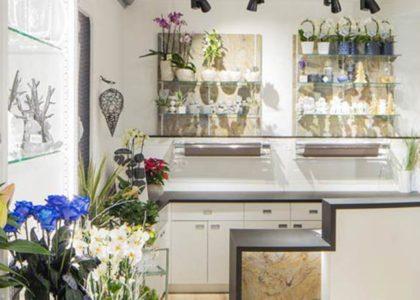 Le blog Evema Agencement - Fleuriste : Quelles solutions d'agencement sur-mesure pour votre magasin de Fleurs ?